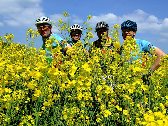 BIKE AID Flower Power